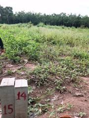 Cần ra gấp lô đất đẹp ở Trảng Bàng - Tây Ninh cho anh trai cưới vợ