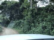 1,1ha đất thổ cư giá rẻ làm trang trại tại huyện Lương Sơn tỉnh Hòa Bình