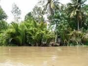 Chính chủ bán 17 công đất 2 mặt tiền ven sông Ba Lai đầu ngõ vào Bến Tre, đường xe 16 chỗ, giá rẻ