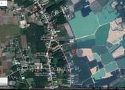 Gia đình cần bán mảnh đất mặt tiền đường nhựa 14 x 33 tại xã Tiên Thuận, huyện Bến Cầu