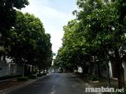 Bán nhà phân lô Nguyễn Thị Định, Hoàng Ngân Cầu Giấy 62m x 5T, 9 tỷ