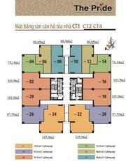 Cần bán nhanh-Bán gấp căn hộ 98.3m2 tòa CT4 The Pride 1tỷ850 full nội thất, có thương lượng