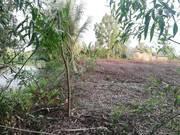 Đất lúa phước khánh 450tr/1000m2 nhanh tay cọc gấp nào khách ơi