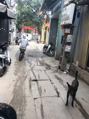 39m2 đất Ngọa Long, Minh Khai, Bắc Từ Liêm kinh doanh nhỏ
