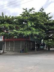 Xuất cảnh cần bán gấp đất 2 MT ngã tư Nguyễn Phước Thái, Lê Thị Tính.