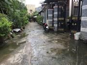 Chính Chủ Cấn Bán Dãy Phòng Trọ Gồm 7 căn  DT : 160,7m2  Nguyễn Trung Nguyệt Quận 2 , TP HCM