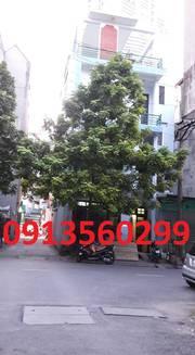 Bán nhà mặt phố Lý Thường Kiệt Hà Đông 52m2 lô góc MT5,5m KD 5,3 tỷ