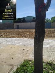 Bán đất sổ đỏ, đất nền mặt tiền 7.5m,
