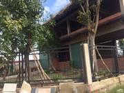 Sang lại gấp Quán cafe Hoàn thiện 50 Nguyễn Thị Nuôi, 2MT 8m, 1 tỷ 5 .
