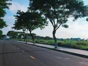 Bán đất dự án biệt thự ven sông ,phường hòa cường bắc ,hải châu ,đà nẵng