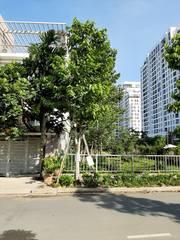 Bán Đất Đường số 10 Mặt Tiền Sông Sài Gòn. P. Hiệp Bình Chánh, Q. Thủ Đức.