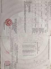 Chính chủ bán 113m2 đất HẺM đối diện Tiểu học Phong Phú đường Dương Đình Hội TNP B Q9 34.5trieu/m2