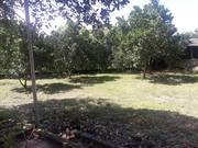 Lô đất nghĩ dưỡng quá xuất sắc vew hồ tuyệt đẹp ở Cổ Đônng Sơn Tây Hà Nội