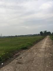 Đất trồng cây lâu năm 2 mặt tiền sông cầu Bến Nẩy Tỉnh Lộ 15