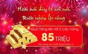 Bán căn hộ chung cư TSG Lotus Sài Đồng chỉ với 600tr, tặng đến 85tr, CK 3.5, hỗ trợ ngân hàng 0