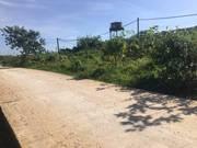 Bán đất gần 1000m2 Mặt tiền 50m,đường bê tông, sạch sẽ