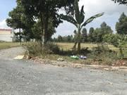Bán 103m2 lô góc Ngân Thuận sổ đỏ thổ cư đường 25m ngay khu trường học 930tr
