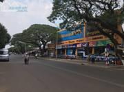Hot    Gần tết thu hồi vốn bán nhanh lô đất Bình Dương gần KCN Becamex giá rẻ
