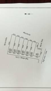 Bán đất  Bạch Mai Đồng Thái An Dương thành phố Hải Phòng LH