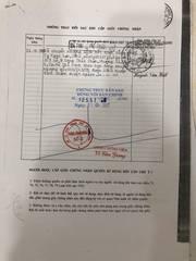 Chính chủ cần bán gấp căn nhà mặt tiền tại huyện Bình Chánh, TP.HCM