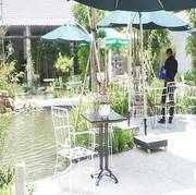 Sang quán cafe sân vườn TP Bến Tre ,Giá rẻ