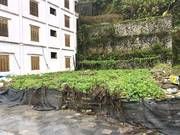 Bán lô đất hot tại thị trấn Tam Đảo