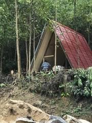 Cần nhượng lại homestay nhà nghĩ kiểu nhà trong rừng ở hoà ninh   hoặc làm trang trại