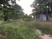 Bán vườn xoài rộng 3,2ha ở suối tân, cam lâm