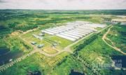 Cơ hội cho các nhà đầu tư chăn nuôi, cho thuê. bán trang trại heo 8.5 ha đang cho thuê 470tr/th