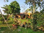 Nhà vườn vị trí đắc địa ngay ngã 3 sông - làng bưởi tân triều năm huệ - sổ riêng thổ cư - 1771m2