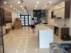Cho thuê biệt thự đơn lập 250 m2 X 3 tầng đủ nội thất giá 36 tr/tháng