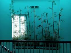 Cho thuê nhà 4 tầng mặt đường thị trấn An Dương Hải Phòng