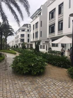 Chính chủ cho thuê biệt thự Làng Việt Kiều Châu Âu 250m2 X 3 tầng giá 35tr