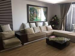 Cho thuê chung cư Dolphin Plaza 198m2 4PN, đủ nội thất sang trọng  ảnh thật