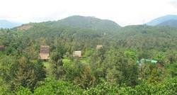 Bán nhà đất vườn cây ăn trái diện tích lớn tại Lâm Đồng
