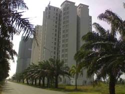 Cần bán căn hộ The Mansion, H.Bình Chánh, DT : 83 m2, 2PN, Giá : 780 tr/căn,