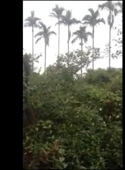 Bán lô đất ở bắc sơn ân thi hưng yên có video hình ảnh