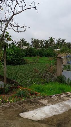 Bán đất Hóc Môn 4500  70 x 60 tại xã Tân Thới Nhì