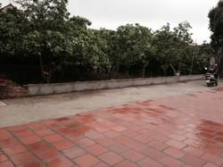 Bán 60m đất thổ cư SĐCC tại xã Tráng Việt Mê Linh Hà Nội