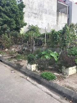 Nhượng QSD 126m2 đất lô 16D Đường Lê Hồng Phong