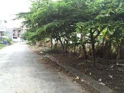 Bán 2 lô đất làm nhà xưởng tai Trang Quan, An Đồng, Hải Phòng