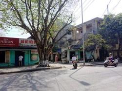 Cho thuê mặt bằng trung tâm thành phố Huế