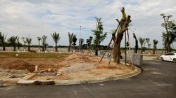 Bán nhà biệt thự khu đô thị Royal park Huế, chốn an cư sang trọng xanh sinh thái xứng tầm thượng lưu