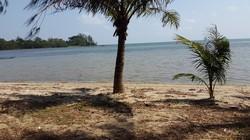 Cần bán 7 Ha đất Phú Quốc, đường Đá chồng