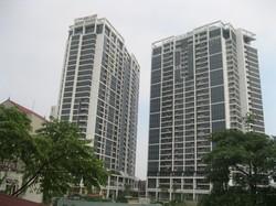 Cho thuê căn hộ chung cư cáo cấp TSQ Euroland - Khu đô thị Mỗ Lao