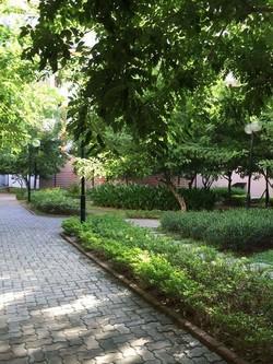 Bán và cho thuê căn hộ chung cư NESTHOME tiêu chuẩn hàn quốc
