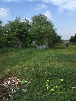 Bán đất thổ cư mặt tiên quốc lộ 62 thuộc địa phận thj xã kiến tường