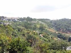 Bán đất Nông nghiệp Đà Lạt view Đẹp  1450m2-1ty6