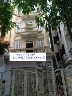 Cho thuê văn phòng khu hoàng cầu, láng hạ, thái thịnh 120m, 5-9 tầng