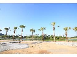 Bán đất tại Liên Chiểu, đường 10m5 chỉ 8,7 triệu/m2
